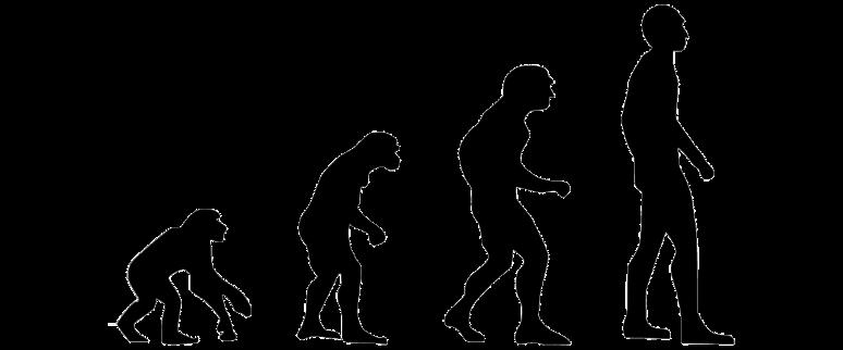 この画像には alt 属性が指定されておらず、ファイル名は evolution-2780651_1280.png です